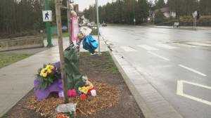 Trial begins for two men accused in fatal crosswalk crash (01:39)