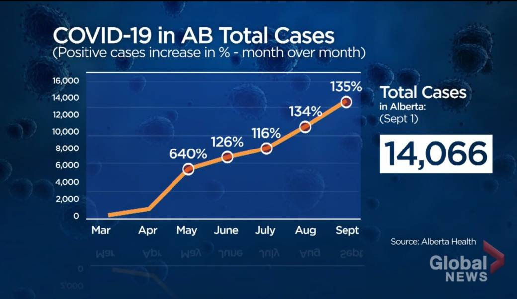 By The Numbers 6 Months Since Alberta S 1st Covid 19 Case Confirmed Globalnews Ca