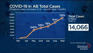 By the numbers: 6 months of COVID-19 in Alberta (01:29)