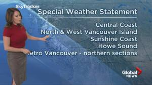 Special weather statement in B.C. forecast
