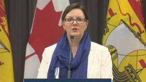 Coronavirus outbreak: New Brunswick investigating 1st possible community spread case among 12 newly confirmed