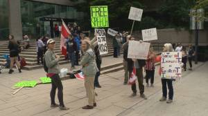 Group against COVID-19 vaccine card gathers at B.C. Supreme Court (02:13)