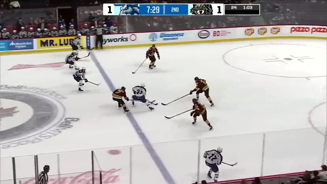 HIGHLIGHTS: AHL Wolves vs Moose – Dec. 6