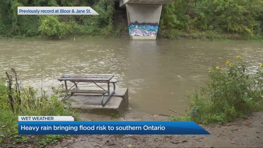 Click to play video: 'Steady rainfall across southern Ontario prompts warnings'