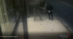 Stabbing on Gottingen Street caught on camera