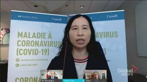 Canada's COVID-19 case counts declining, but variants still a threat: Tam (01:01)