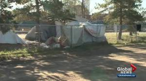 Edmonton's homeless camps leaving nearby residents concerned