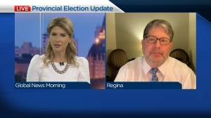 How the process works for the provincial election vote count (04:42)