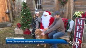 Kelowna dogs pose with Santa for a good cause