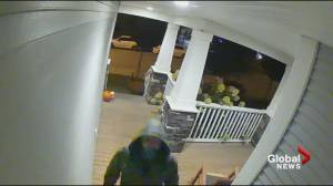 Langley home security camera records its self being stolen