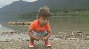 Visitors to B.C. provincial parks asked to physically distance, day use only