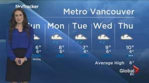 B.C. evening weather forecast: January 2 (02:35)