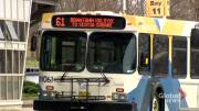 Play video: Two Halifax transit drivers test positive for COVID-19, Union calls for vaccine priority