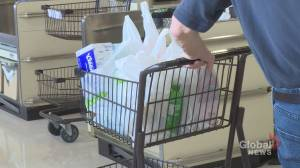 Nova Scotia to ban use of most plastic bags