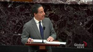 Trump impeachment: Rep. Raskin recounts Capitol officer's emotional response to racism during Capitol riot (01:18)