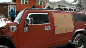 Dozens of vehicles reported vandalized in northeast Calgary (01:54)