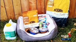 Calgary group inundated with requests for pet food hampers (03:57)