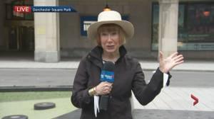 Global News Morning weather forecast: June 4, 2021 (01:52)