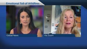 The psychological effects of wildfire evacuations (05:09)