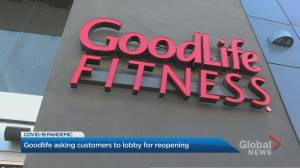 GoodLife Fitness urges members to write Ontario MPPs in bid to reopen facilities (02:11)