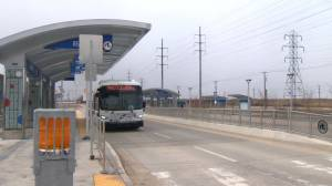 City of Winnipeg considers service cuts to transit during COVID-19 (01:15)