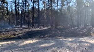 Piney Reeve on blaze in Sandilands Provincial Forest (03:01)