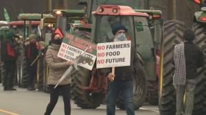 BC Civil Liberties Association calls on Surrey RCMP to overturn India farmers' protest ticket (03:13)