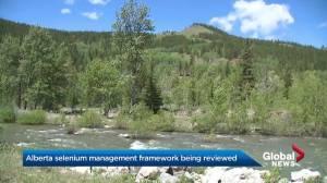 Alberta selenium management framework being reviewed (01:47)