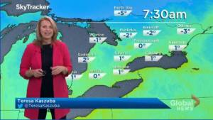 Peterborough Regional Weather Update: November 17, 2020 (02:50)