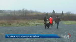 Trail use has increased during the coronavirus pandemic (01:49)