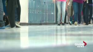 9 out of 10 teachers say they face violence, bullying in Alberta schools: ATA survey (02:19)