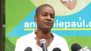 Green Party leader Annamie Paul says 'small group' of party execs responsible for recent court case (05:46)
