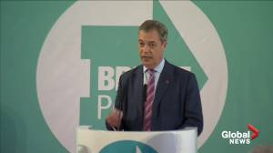 Brexit Party will not challenge Conservative Party in 317 seats: Farage
