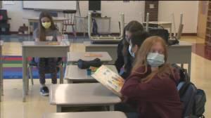Peterborough-area school boards creating vaccination disclosure policies (02:14)
