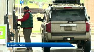 Gas prices across Canada rise due to carbon tax (02:54)