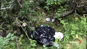 Alberta Parks looking to educate visitors about littering etiquette after busy 2020 (01:38)