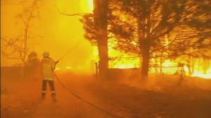 B.C. firefighters are among the dozens of Canadians who've joined the wildfire fight in Australia