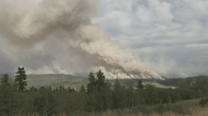 Rising temperatures push up the wildfire risk in B.C.