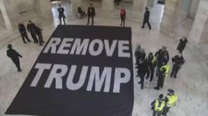 Authorities arrest protesters after 'Remove Trump' banner laid on floor of U.S. Senate building