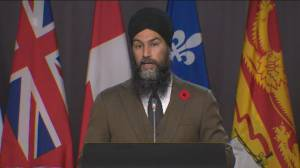 U.S. election: NDP Leader Jagmeet Singh says lot of Canadians woke up 'pretty worried' amid unknown results (03:16)