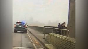 Washington police officer grabs woman as she appears to try to jump off bridge