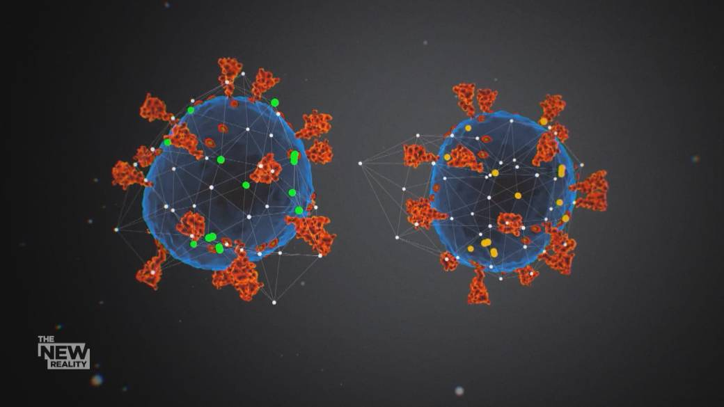 Click to play video: 'Coronavirus Variants: How patients with weak immune system may offer clues'