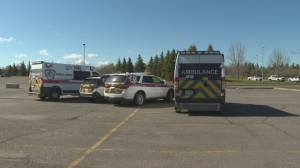 New Brunswick police say no injuries reported after shots fired in Moncton park (01:04)