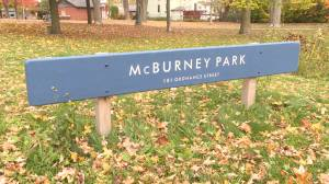 Scary history to Kingston's McBurney or Skeleton Park