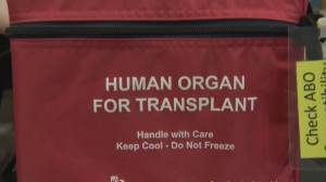 Record year for heart and lung transplants in B.C. (02:10)