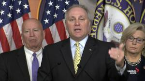 Scalise accuses Democrats of 'abusing' power of impeachment