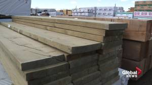 High lumber costs split the Alberta home building market: 'Someday all this has to be paid for' (01:59)