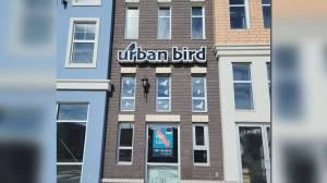 Urban Bird engages Edmonton birdwatchers (05:28)