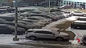 Vehicle stolen in overnight from north Edmonton car dealership