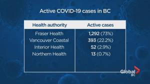 B.C. sets new record for new COVID-19 cases, with 203 (01:31)